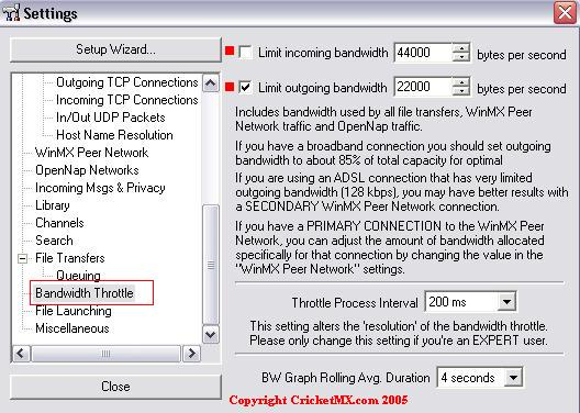 Settings Bandwidth Throttle(DSL).jpg